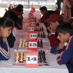 Chess Warriors thinking hard to beat their opponents.