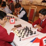 Chess Masters on Strike